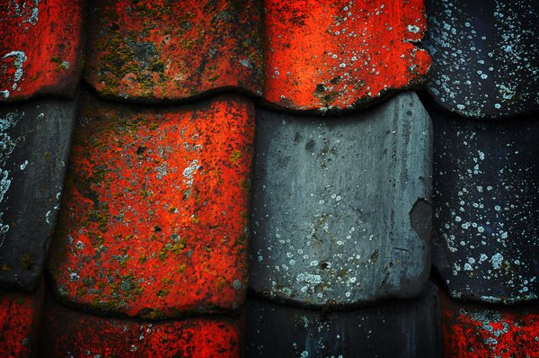 colors: old tiles on a roof