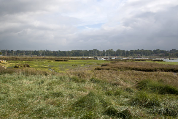 Low tide estuary: An estuary at low tide in Hampshire, England.
