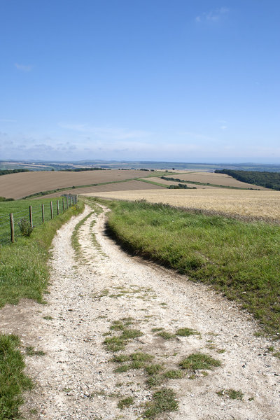 South Downs track