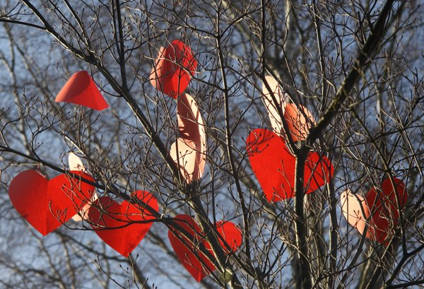 Hidden hearts: Hearts in a tree