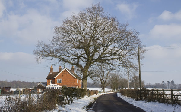 Rural landscape: A rural lane in West Sussex, England, in winter.