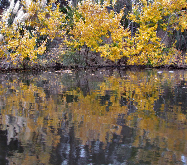 autumn river reflections1