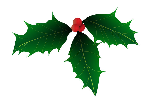 Christmas Holly: a decorative illustration of holly with bright red berries