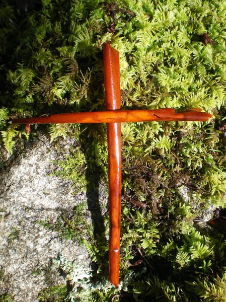 cross of arbutus bark
