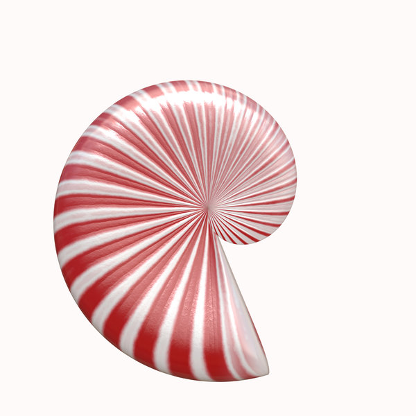 Ammonite 2: A rendered ammonite in candy cane red and white stripes.