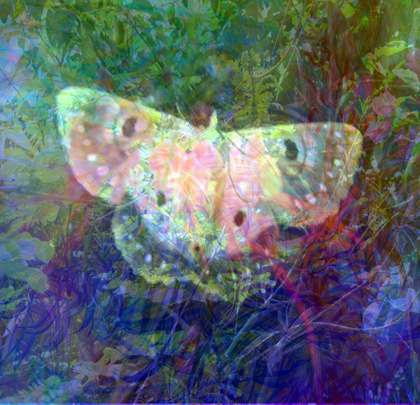 Vivid Fantasy Collage 6