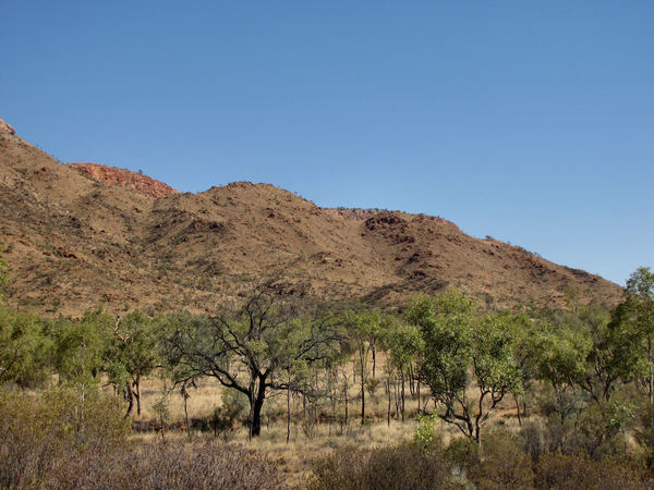 rocky mountain ridge7: rocky mountain ridge on the outskirts of Alice Springs in Central Australia