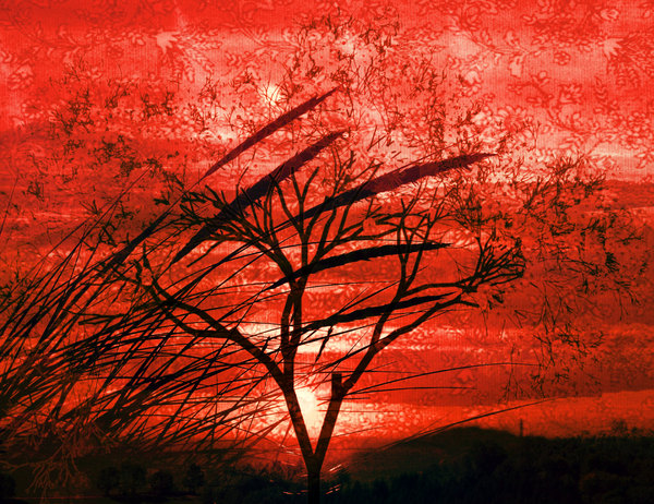 Landscape Collage 1: A collage of landscape images and a sunset. Dramatic red and black makes this spectacular.