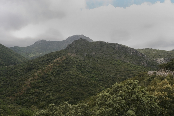 Green mountains: Forested mountains in southern Spain.