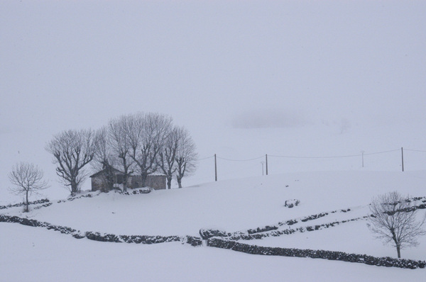 Snow in Alto Campoo