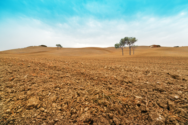 Tuscany plowed Field: Plowed Fields on rolling Hills in Tuscany. Dry Soil.