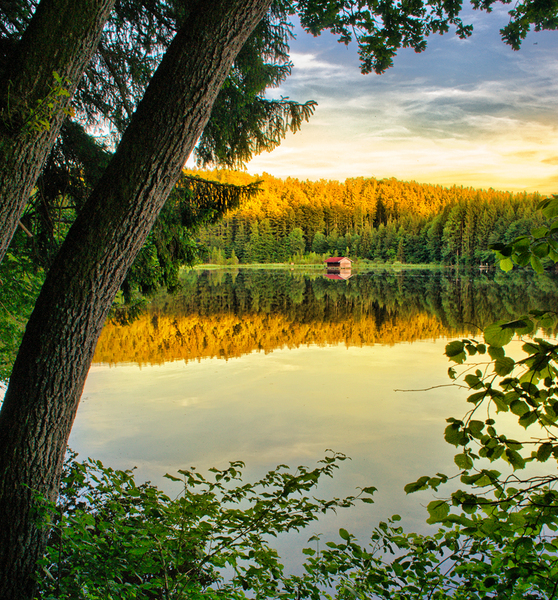 Cottage in the Lake - Sunset: Sunset on a hidden Lake framed by deep Forests - Focus on a small Cottage in the Water