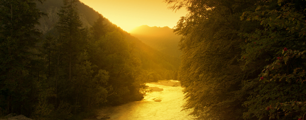 Golden River: Mountain River at Sunset