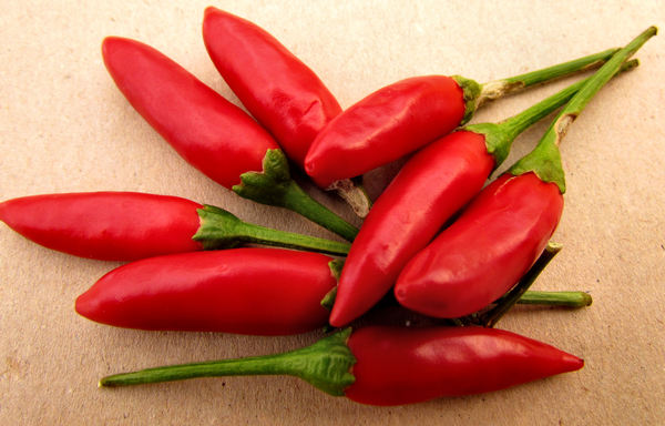 red hot1: small red hot chilli peppers