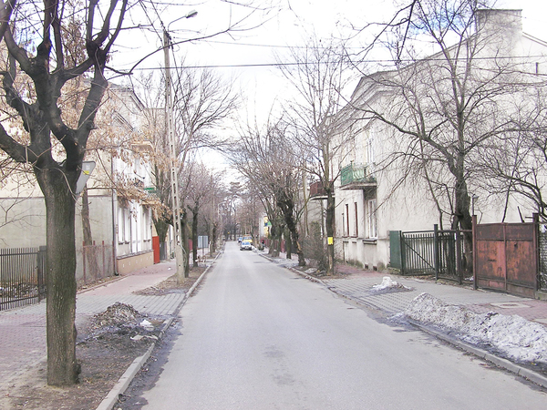 Street in early spring