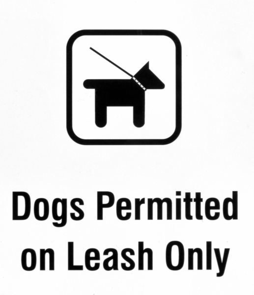 no loose dogs