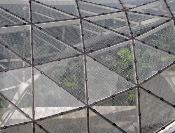 meshed window triangles1