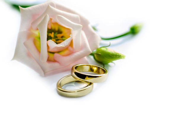 Wedding rings 3: Wedding rings on white background with pink flower