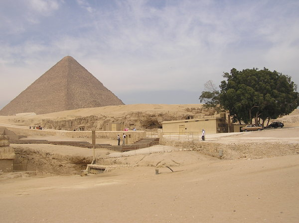 Pyramid in Giza: There is a life on that desert!
