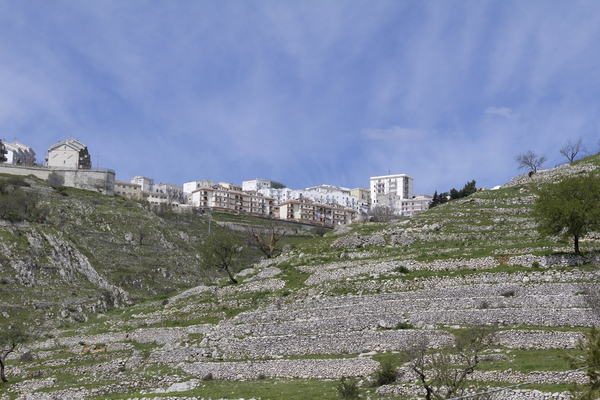 Mountainside terraces: Old stone terraces on a limestone mountain in southern Italy.