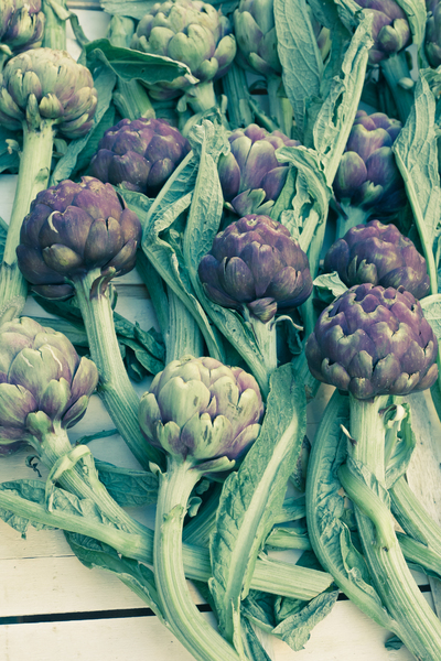 Artichokes 1: Photo of artichokes