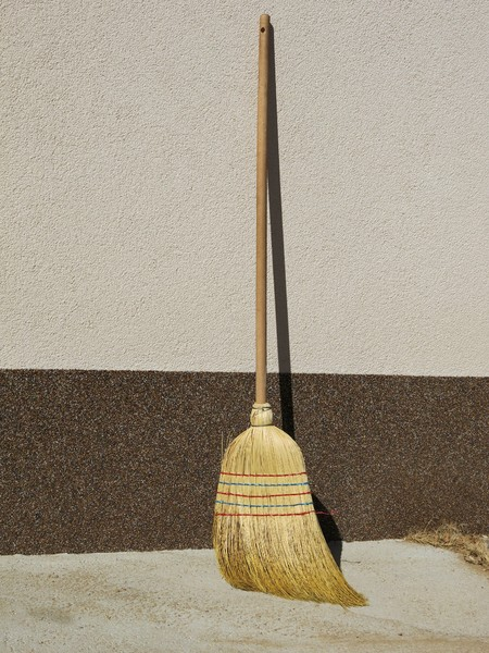 common broom: none
