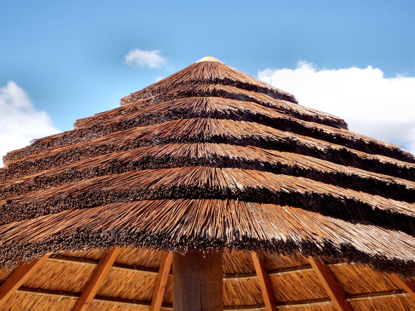 thatched patio roof3: trendy patio roof thatching