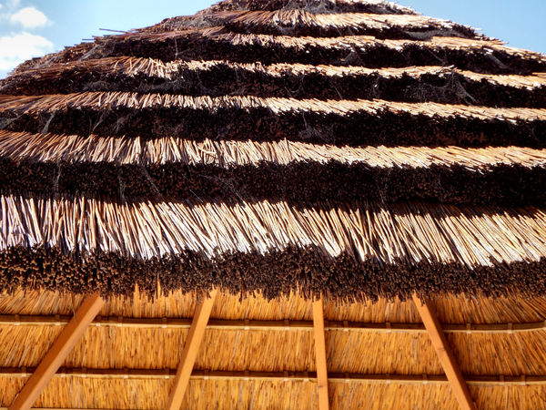 thatched patio roof4: trendy patio roof thatching