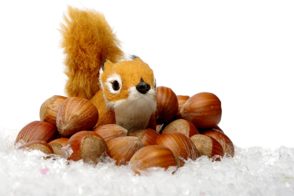 Plush squirrel with nuts