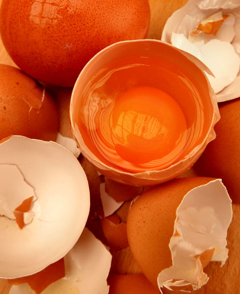 broken egg shells10