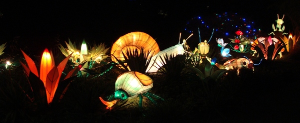 Fantasy Lights 2: Pictures of the China Festival of Lights in Emmen.