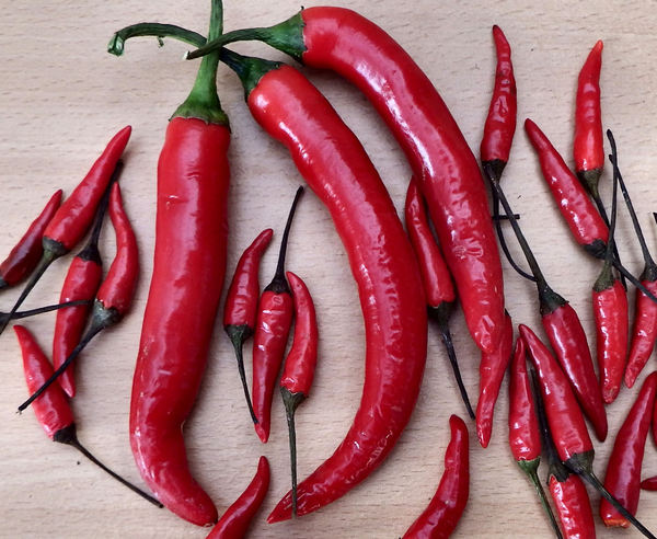 red hot chillies1