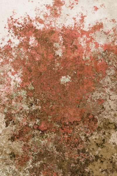 Rusted Background 5: A rusty, flaky metallic  background, texture or fill. Very high resolution. You may prefer this:  http://www.rgbstock.com/photo/nIFQ1nM/Rusted+Metal+Plate  or this:  http://www.rgbstock.com/photo/o2Eo5Z6/Rusted+Background+3