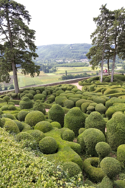Topiary and belvedere
