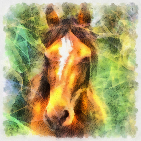 Horse: Digital abstract horse.