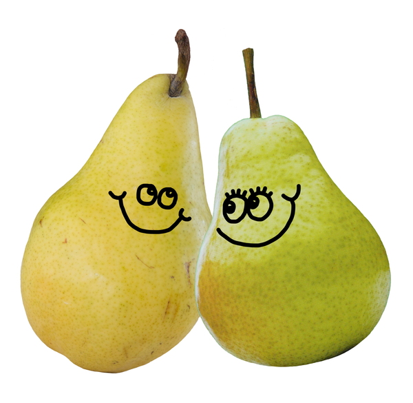 A Pair of Pears: A happy pear fruit couple.