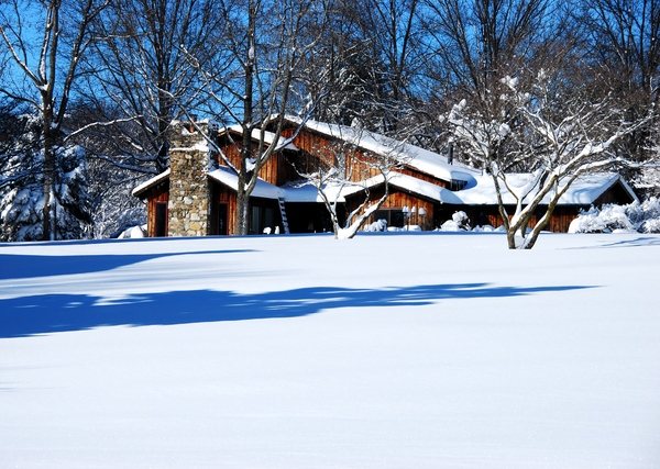 Chalet in Snow and Woods