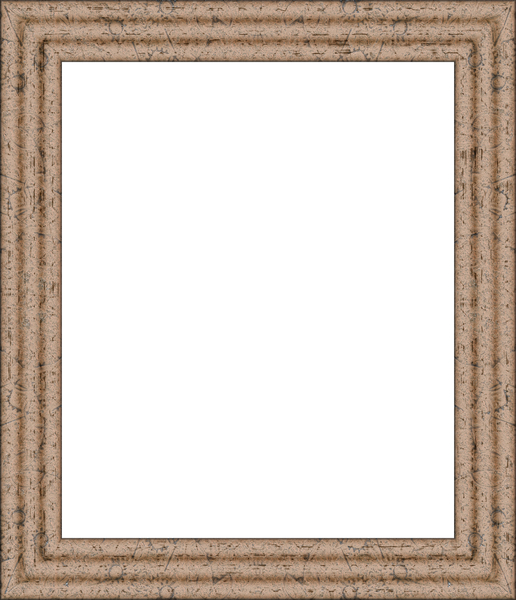 Fancy Picture Frame 15