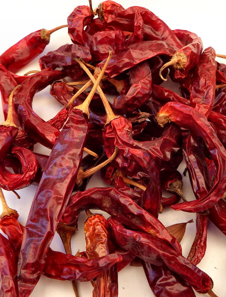 sundried chillies2