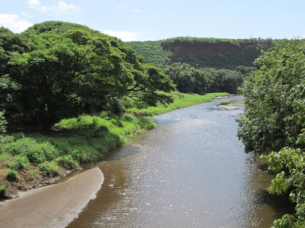 Waimea River (from the swingin