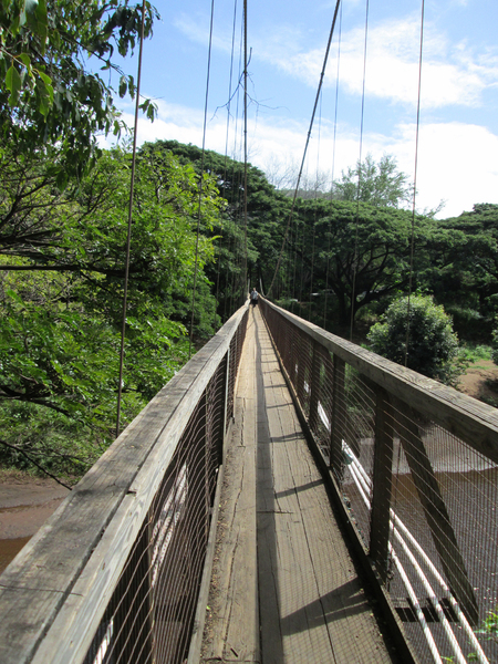 Waimea Swinging Bridge 1
