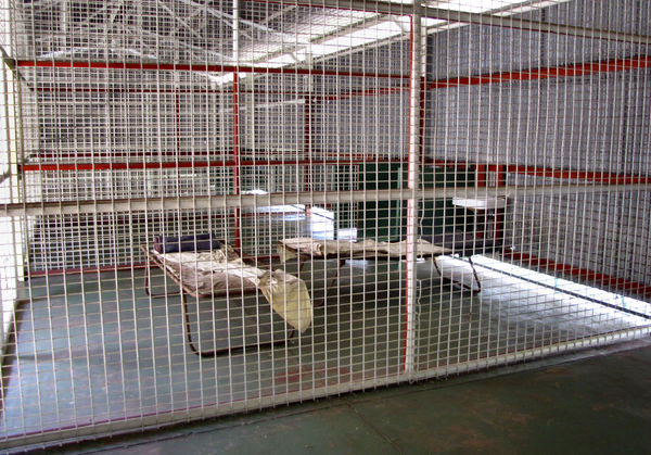 caged accommodation1