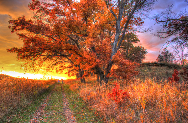 Colorful Autumn Sunset