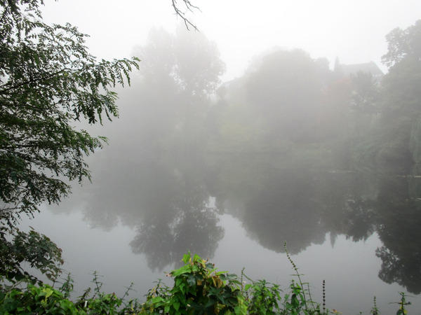lake in autumn fog 2
