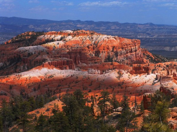Sunrise Point: Sunrise Point in Bryce Canyon National Park, Bryce, Utah. Springtime