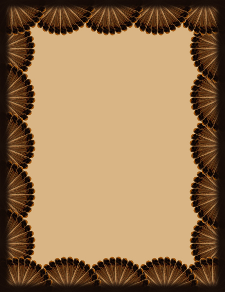 TURKEY FEATHERS: A nice border created for thanksgiving with turkey feather design. Fits on an 8.5 x 11 document.