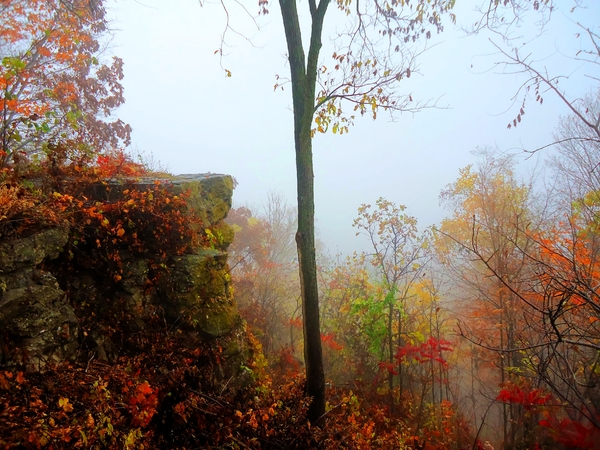 Color bluff in Autumn