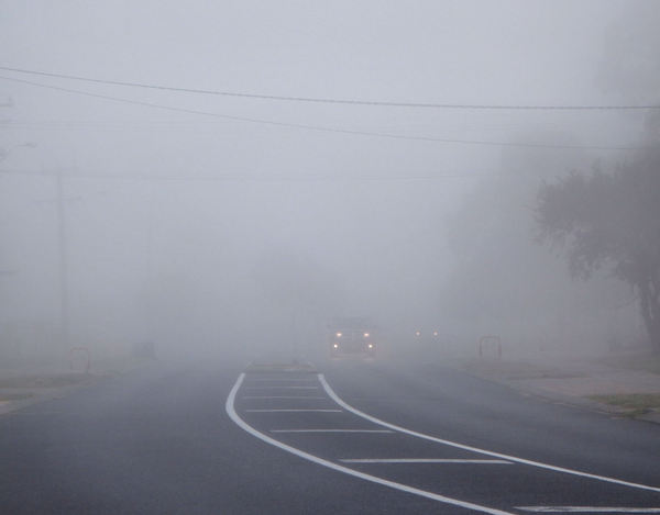 misty morrning4: early morning mist covering roadway