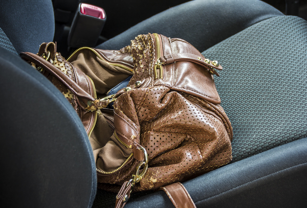 Open Purse on Car Seat