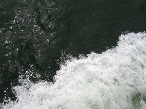 Ocean wave: A bow wave from a tourist harbour boat